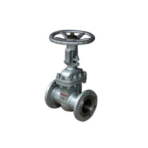 ANSI150 Stainless steel resilient seated double flange gate valve