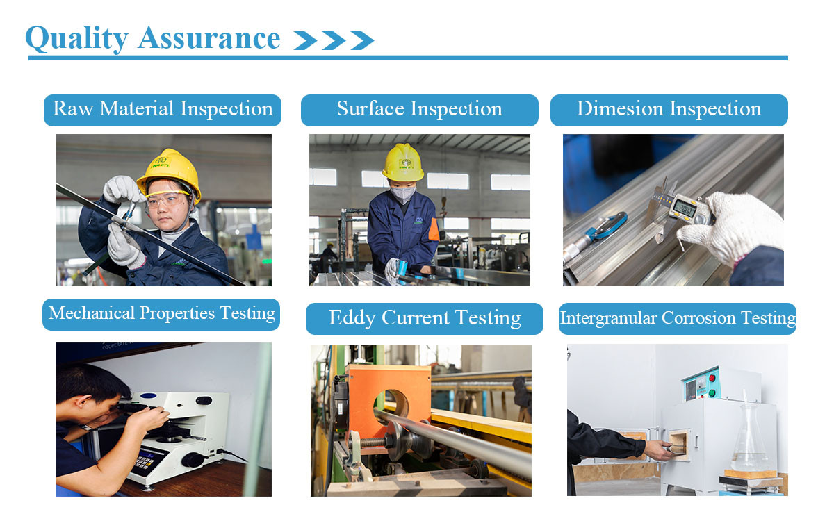 vinmay quality assurance