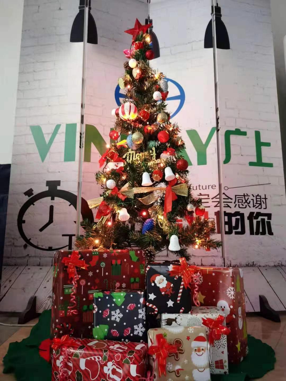 Vinmay Christmas
