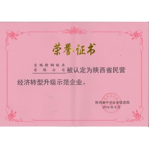 陜西省民營經濟轉型升級示范企業