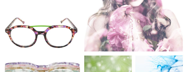 Glasses and glasses accessories