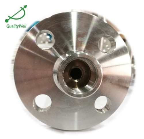 Drilled Stainless Steel Flange Thermowell QWFTWS