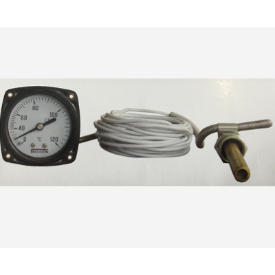 remote reading thermometer with insulating plastic capillary