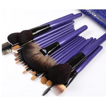 Chengfa Purple 22pcs Natural Hair Professional Makeup Brush