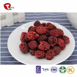 Most Popular Best Tasting Healthy Snacks Dried Blackberries China Supplier