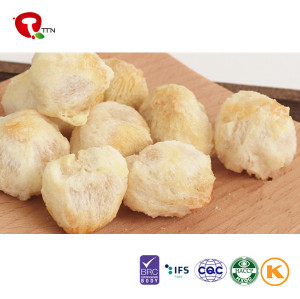 TTN New Sale Freeze Dried Lychee Fruit Chips From Chinese Manufacturers