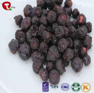 TTN Healthy Natural Freeze Dried Blueberries Fruit Chips
