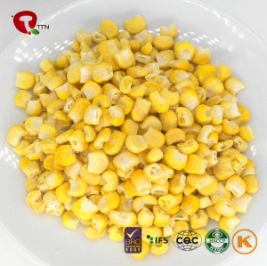 TTN Wholesale Freeze Dried Vegetables of Dried  Sweet Corn Of China Suppliers