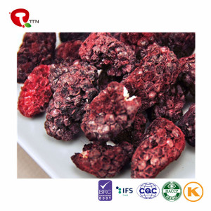 TTN  Best Wholesale Chinese Products Freeze Dried Blackberry Fruit