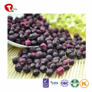TTN  Best Wholesale Chinese Products Blueberry Dry Fruit