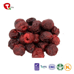 TTN  Best Wholesale Chinese Products Freeze Dried Order Dry Fruits Online