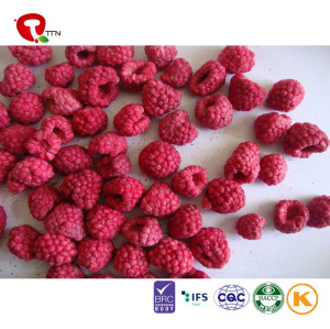 TTN Sell Raspberries For Fresh And Healthy Nutrition