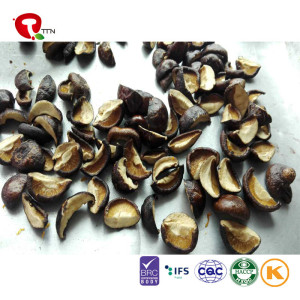 TTN Wholesale Sales Of Freeze Dried Vegetables And Mushrooms For Nutritional Value