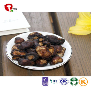 TTN New Sale shiitake mushroom for mushroom sliced