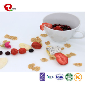 TTN freeze dried fruit powder suppliers with dry fruits for children's
