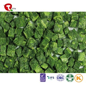 TTN freeze dried spinage with nutrition value spinach extract powder
