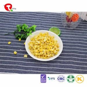 TTN wholesale freeze dried corn powder whole nutritious foods