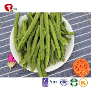 TTN  best Chinese suppliers sell crispy bean with green bean price