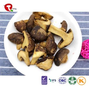 TTN  Wholesale And Sale Of Vacuum Fried Mushrooms With Mushroom Nutritional Value