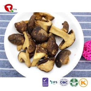 TTN  Wholesale And Sale Of Vacuum Fried Mushrooms With Mushroom Nutritional Value