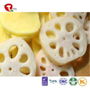 TTN Sale Variety Lotus Root Of Fruits And Vegetables
