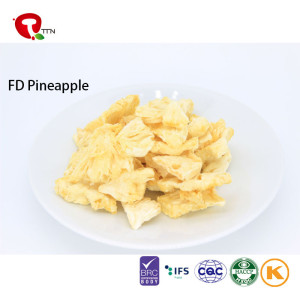 TTN Frozen pineapple, IQF pineapple dice/Canned Pineapple fruits
