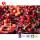 TTN Healthy Fruit Freeze Dried Sour Cherries Tart Cherry