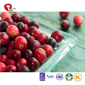 TTN Supplier Wholesale FD Dried Fruits Price Dried Cranberry