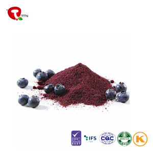TTN Wholesale Sale Dried Blueberry In Smoothie Pieces