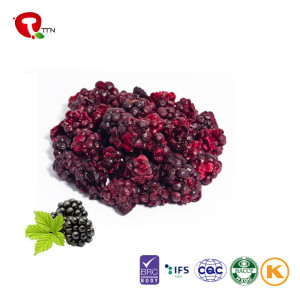 TTN Factory Direct Sale Dried Blackberry With Blackberry Vitamin