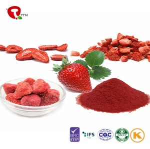 TTN Wholesale Sale Strawberry Juice Dried Strawberry Powder