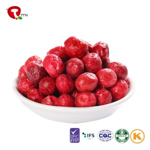 TTN Supplier FD Dried Fruits Price Dried Cranberry