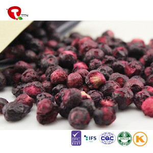 TTN Chinese Dried Blueberry  Bulk Dried Blueberries  Extract For Sale In Good Price