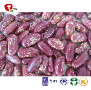 TTN Supplier Wholesale Sales Kidney Beans Nutrition With Calories In A Kidney Bean