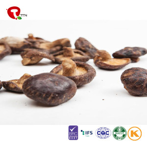 TTN Dried Agaricus Bisporus With Good Quality