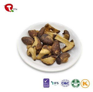 TTN 2018 Hot Sell Vacuum Fried Bulk Mushroom Chocolate
