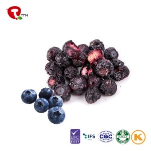 TTN Wholesale Freeze Dried Sugar Free Blueberry Bulk From China