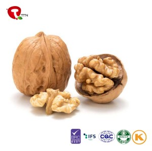 TTN  Wholesale Best Sale Dry Fruit Nutrition Raw Walnut