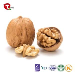 TTN  Wholesale Best Sale Dry Fruit Nutrition Raw Walnut