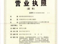 бизнес - лицензии