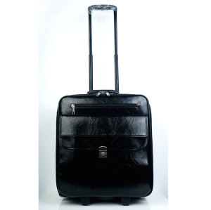 New Developed 16 inch PU Air Flight Trolley Case luggages