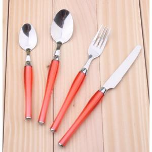 Stainless Steel Spoons Forks Cutlery Set