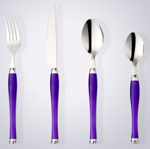 Fashionable flatware with plastic handle