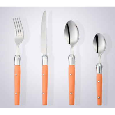 Stainless Steel Cultery with Plastic Handle for Good Online Shopping