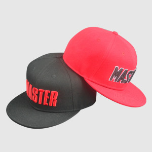 Double Color 6 Panel 3D Embroidery Snapback