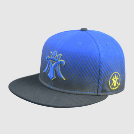 Snapback Hats with 3D Embroidery