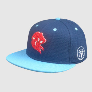 100% polyester 3D Embroidery snapback Hats/Caps