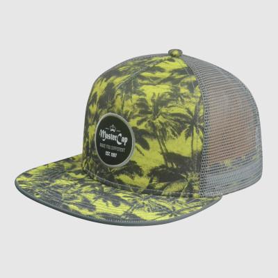 5 Panel  Embroidery snapback Hats/Caps