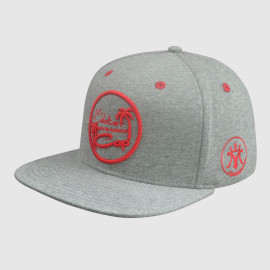 Gray Embroidery snapback Hats/Caps