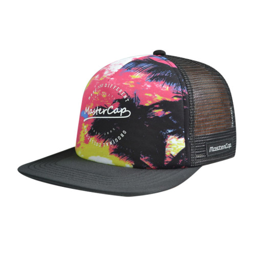 Printing Logo Snapback Hats and Caps